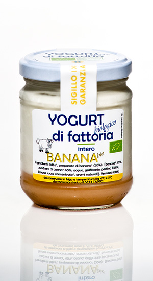 yogurt banana