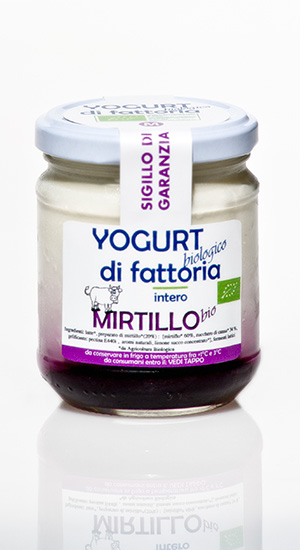 yogurt mirtillo