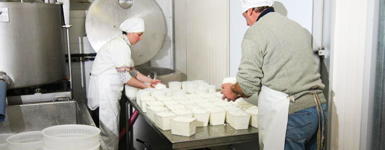 latte formaggi